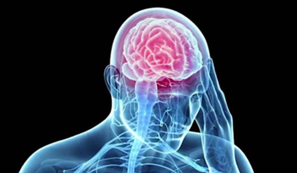 brain-injury-schneider